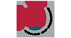 Louis Plung & Company, LLP Logo